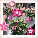 Juni workshops